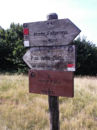 SULLA VETTA PIÙ ALTA DELL'APPENNINO TOSCO ROMAGNOLO Settembre 2020